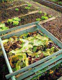 Composting your Natural Waste