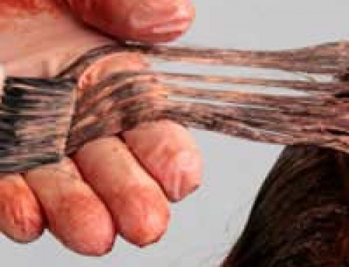 Questionnaire: How Toxic is Your Hair?