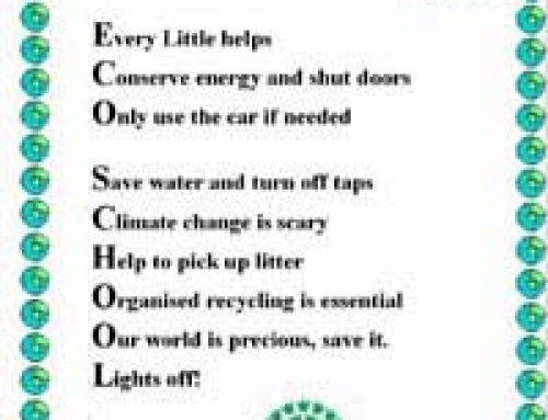 Eco-friendly Schools: A Case Study