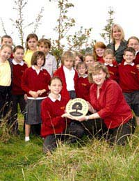 Planting a Woodland Area in School: A Case Study