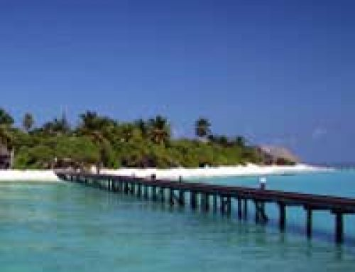 Climate Change and Pollution: How the Maldives Are Sinking