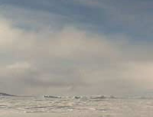 The Poles in Peril: The Vanishing Arctic