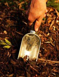 Using Natural Fertilisers